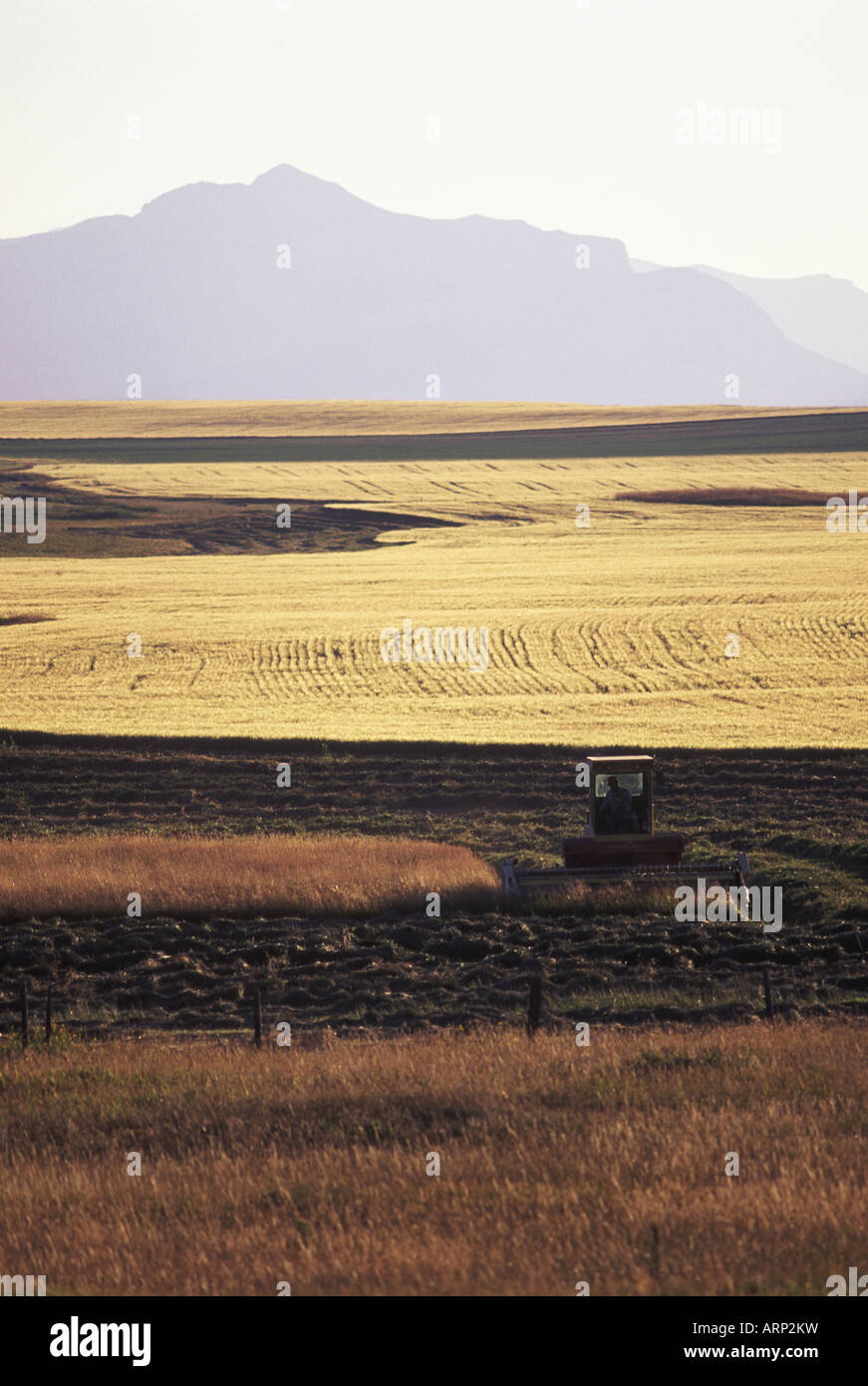 USA, Montana - ranchland and foothills of Rocky Mountains - Stock Image
