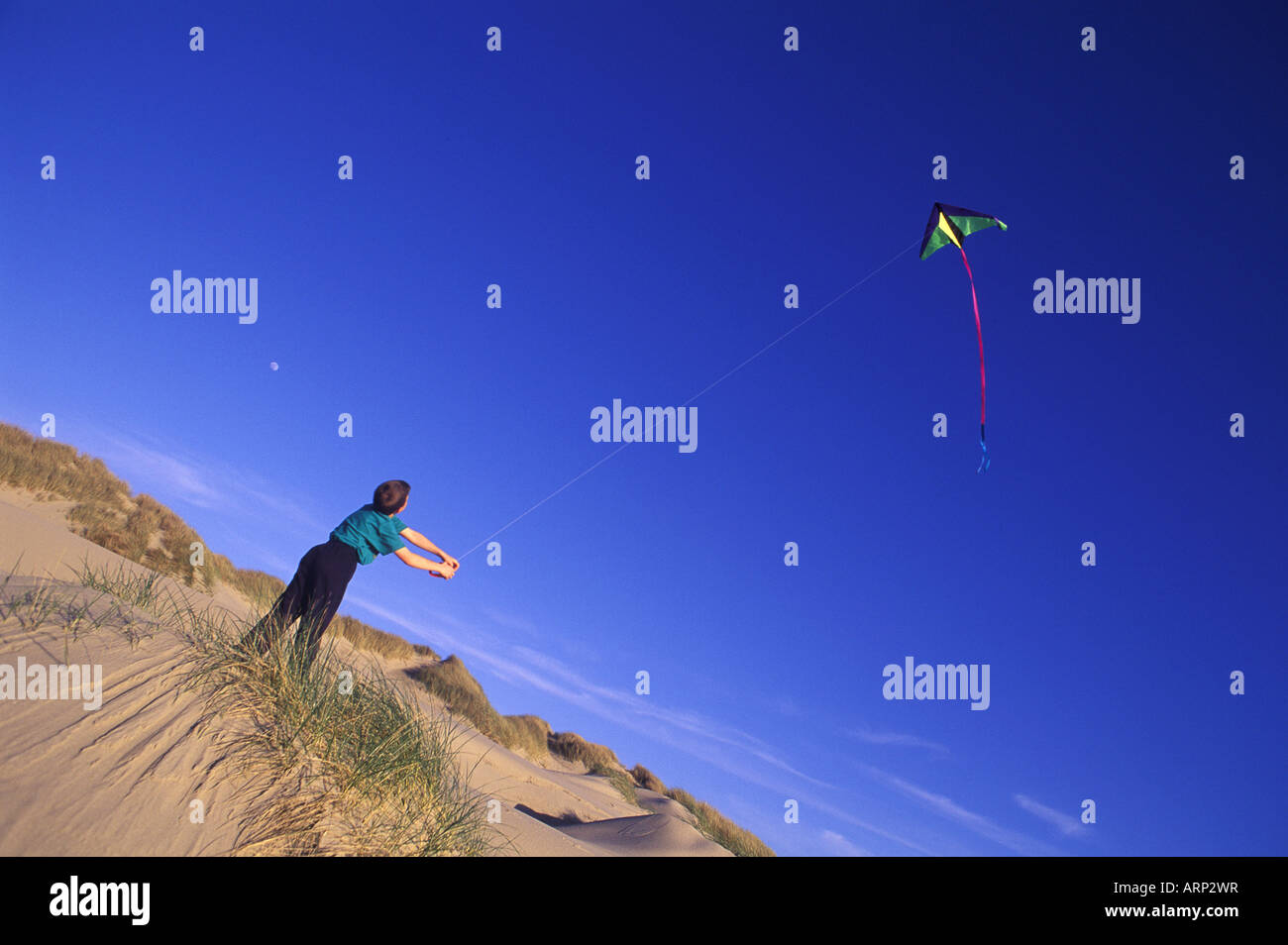 USA, Oregon Dunes National Park, 12 year old boy flies kite from dune - Stock Image