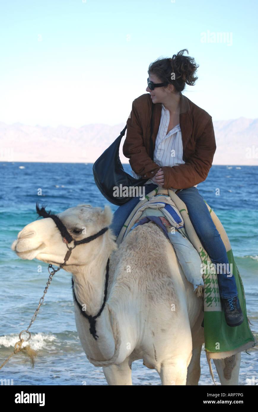 Young woman riding camel on beach, Nuweiba, Sinai Peninsula, Republic of Egypt - Stock Image