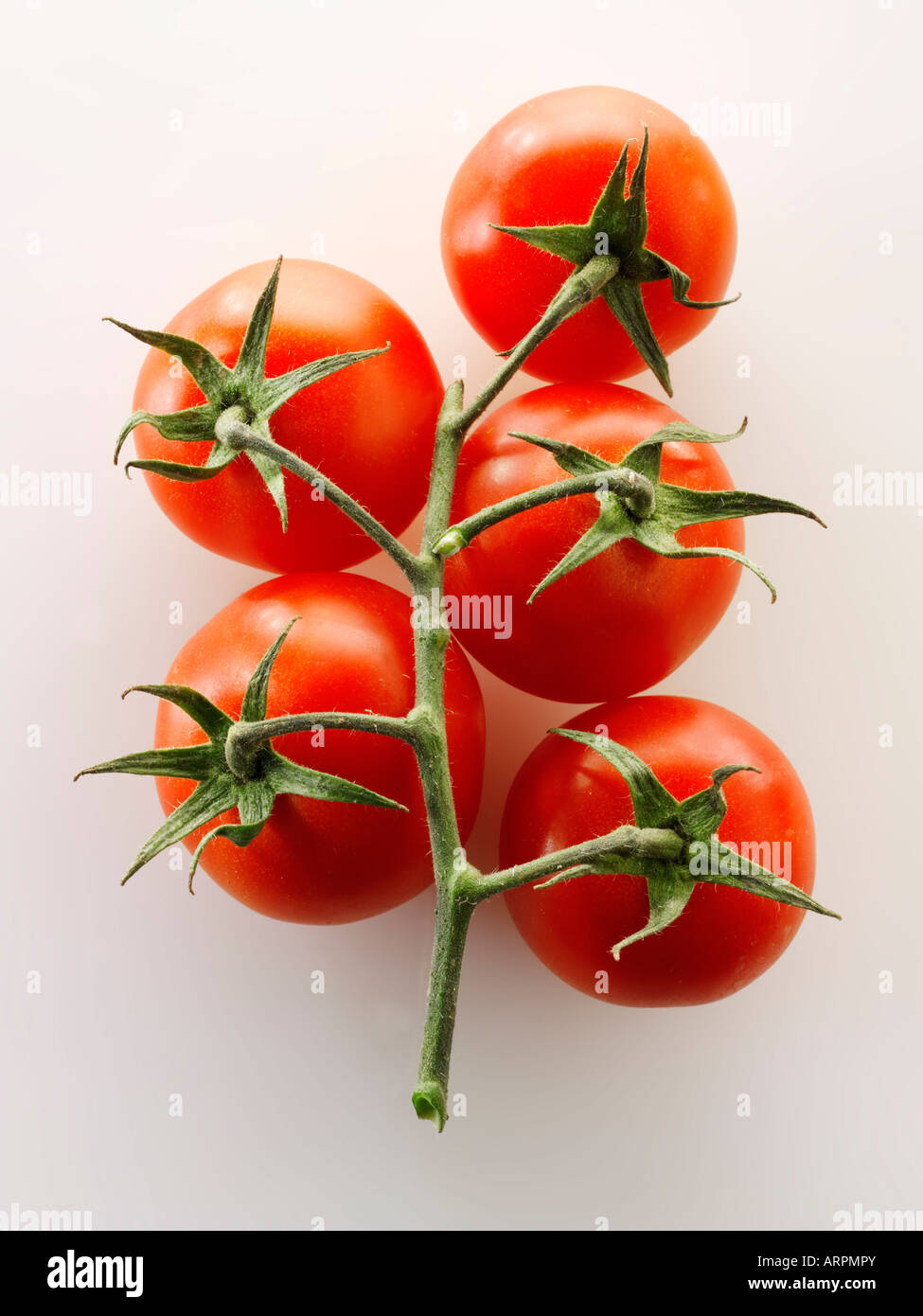 Raw fresh tomatoes on the vine - Stock Image