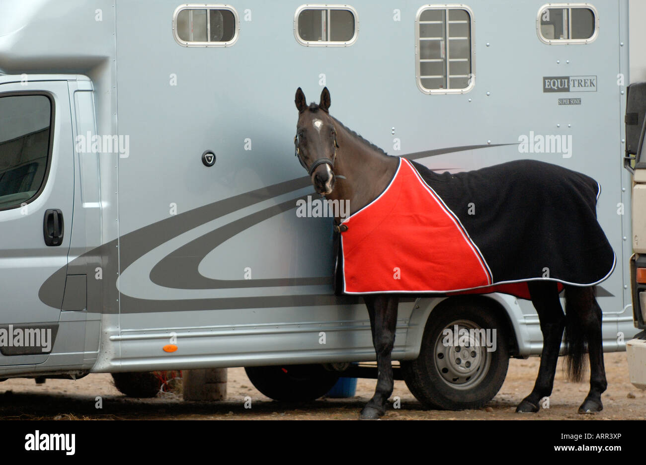 horses tack buckets stables horsboxes and trailers transport mucking out animals riders and saddles cloths thoroughbred - Stock Image