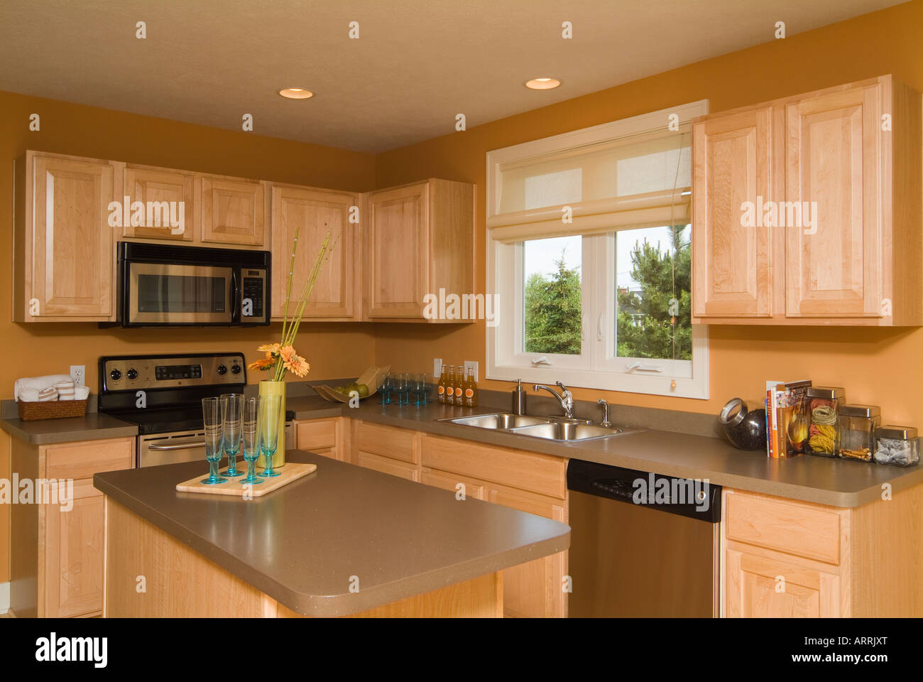Modern American Kitchen With Contemporary Design Wooden Cabinetry Stock Photo Alamy