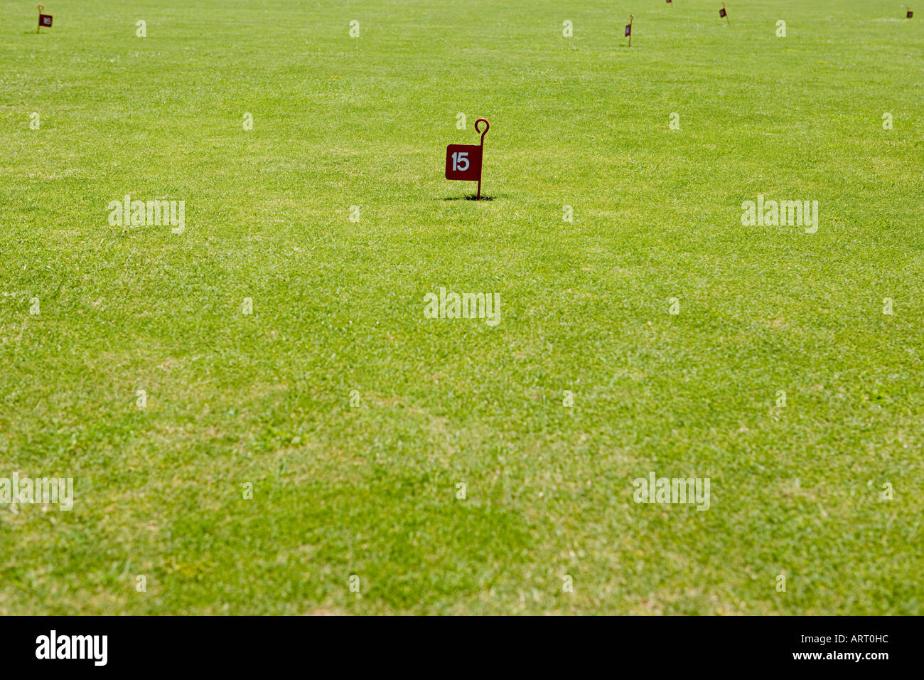 Pitch and putt course - Stock Image