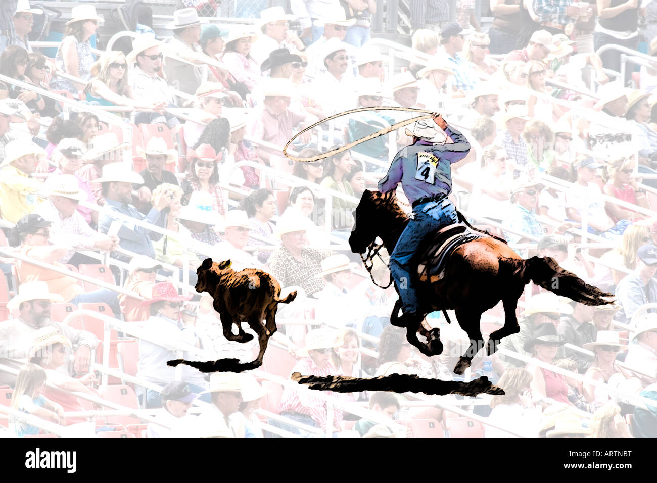 Concept image of rodeo scene with cutout of cowboy chasing after calf with lasso against background of crowd in - Stock Image