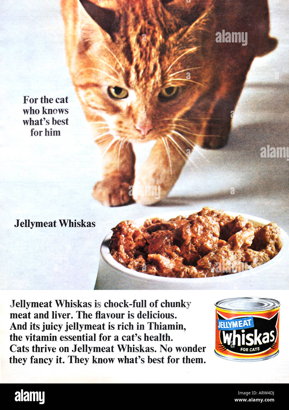 Whiskas Cat Food Portions