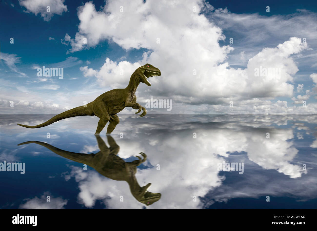 Dinosaur wading in sea clouds reflected in perfectly calm sea - Stock Image