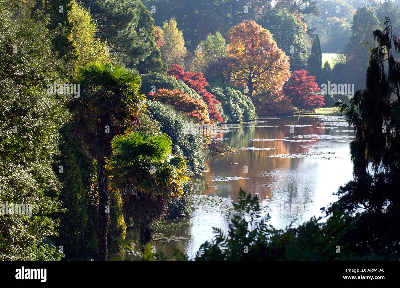 Glorious autumn colour tints leaves at Sheffield Park Gardens near Haywards Heath East Sussex - Stock Image