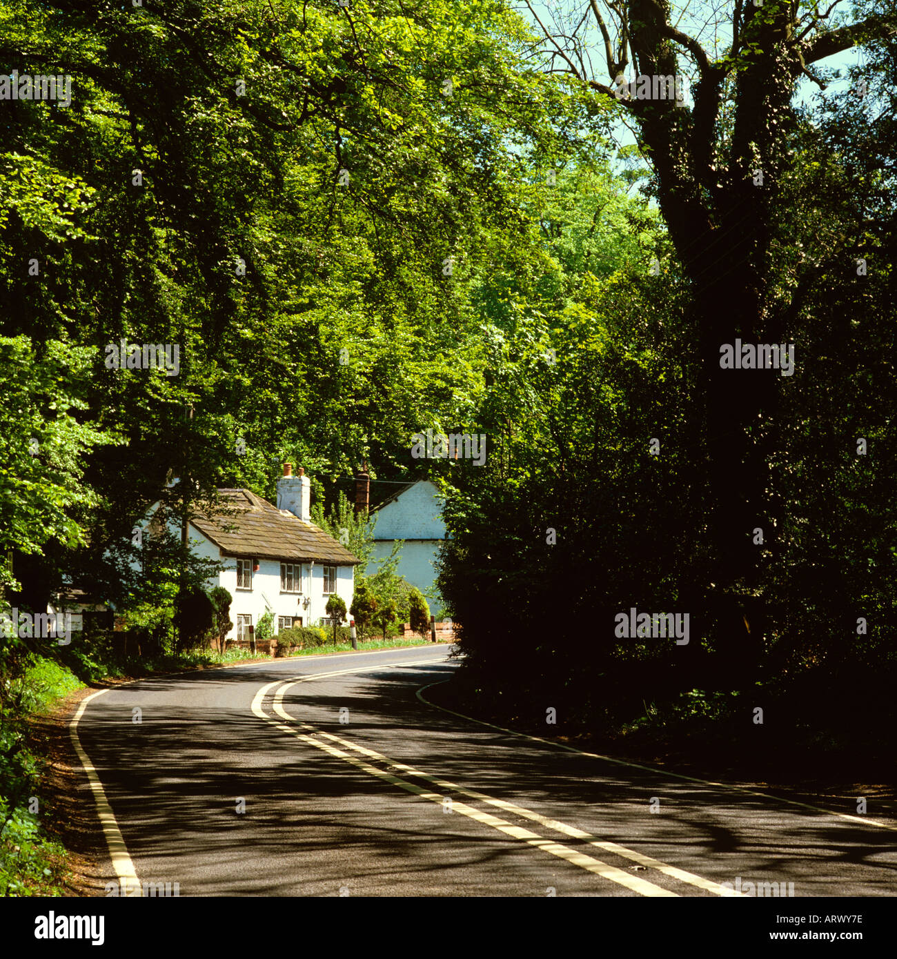 Cheshire Prestbury Fiddlers Elbow country cottage on Stock Photo