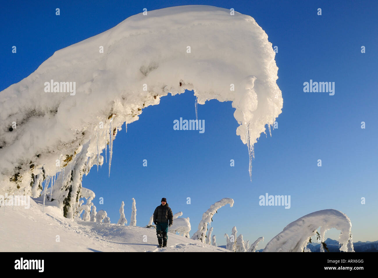 Michael Wheatley snow shoeing Winter Mount Seymour Provincial Park North Vancouver British Columbia - Stock Image