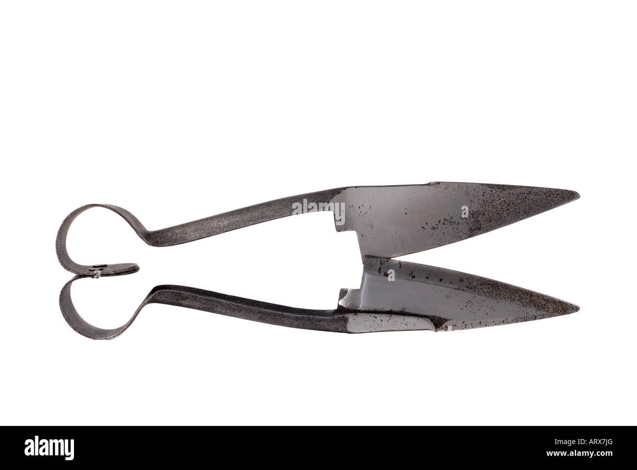 Hand shears - Stock Image