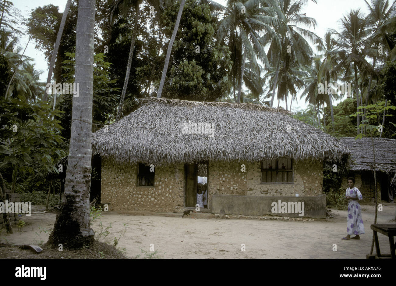A typical native African hut or home Zanzibar Tanzania East Africa - Stock Image