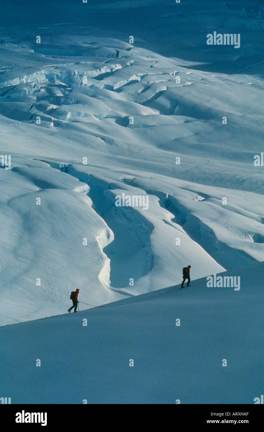 Mountaineering on the Fox Glacier in Westland National Park on the South Island of New Zealand - Stock Image