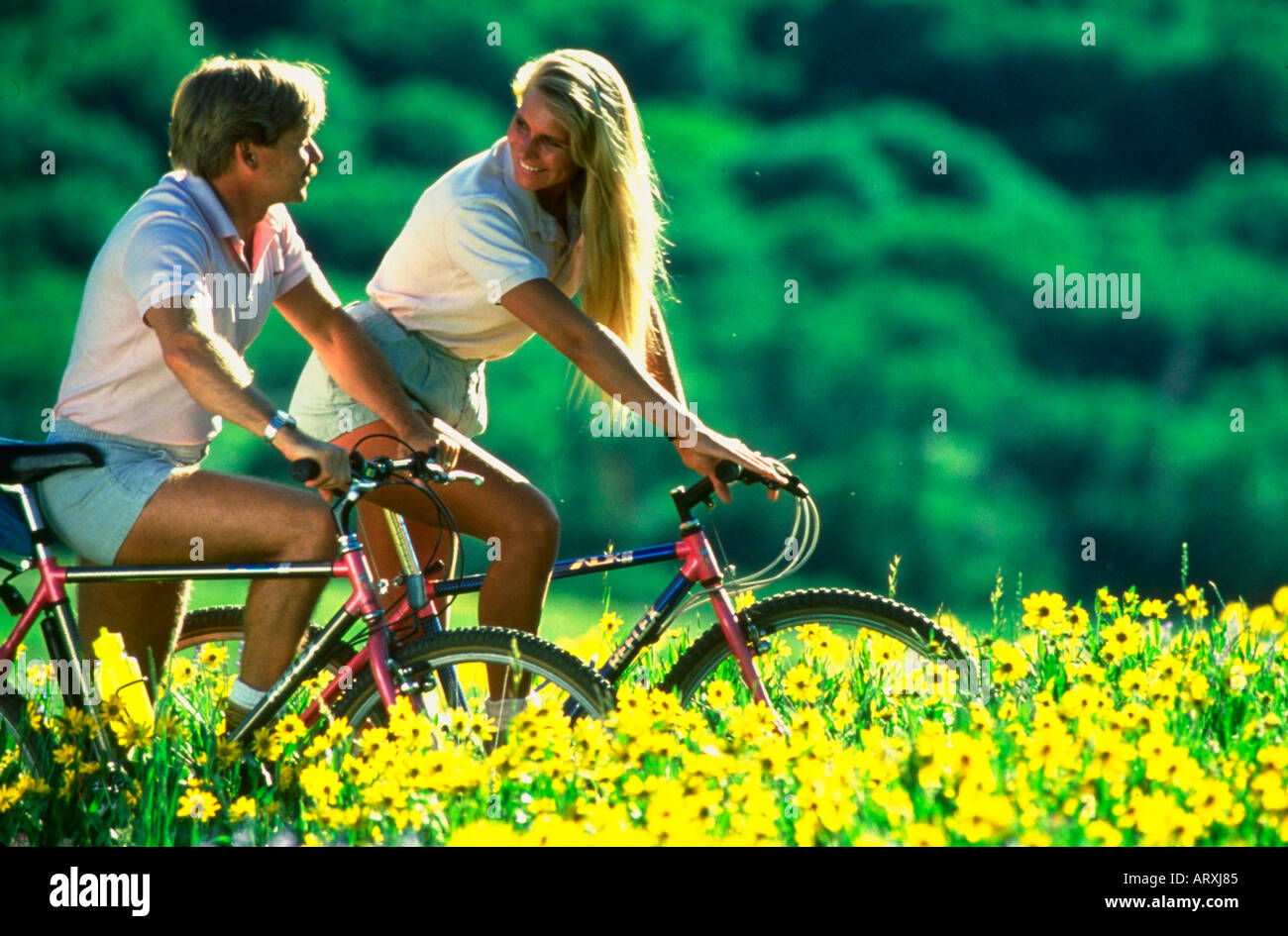 Mountain biking in July wildflowers in Albion Basin in the Wasatch Mountains of Utah - Stock Image