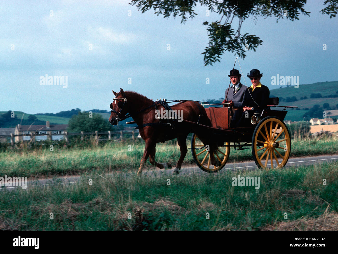 couple in ride and drive horse trap Cotswolds UK - Stock Image
