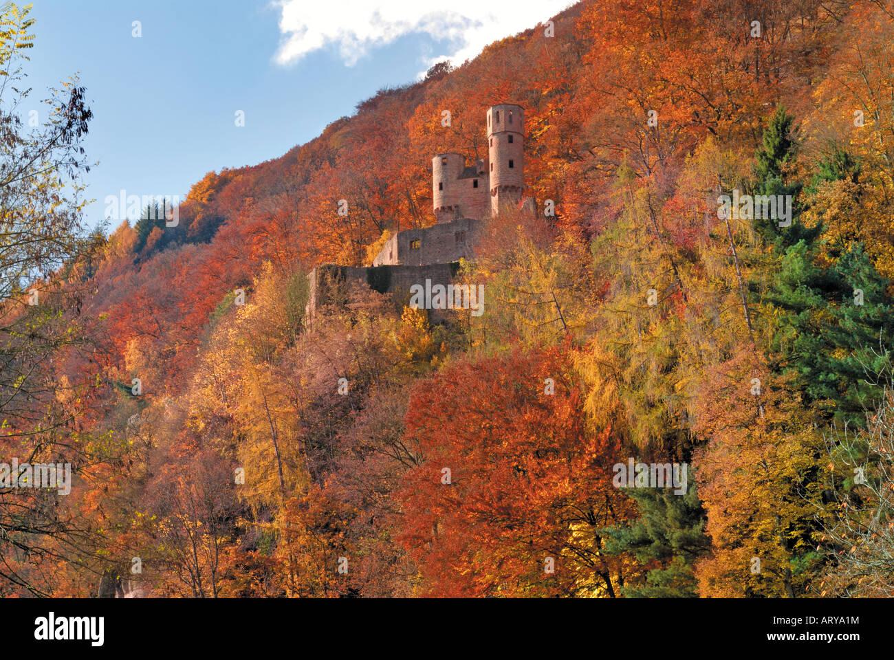 Castle Schadeck in Neckarsteinach, Hessen, Germany Stock Photo