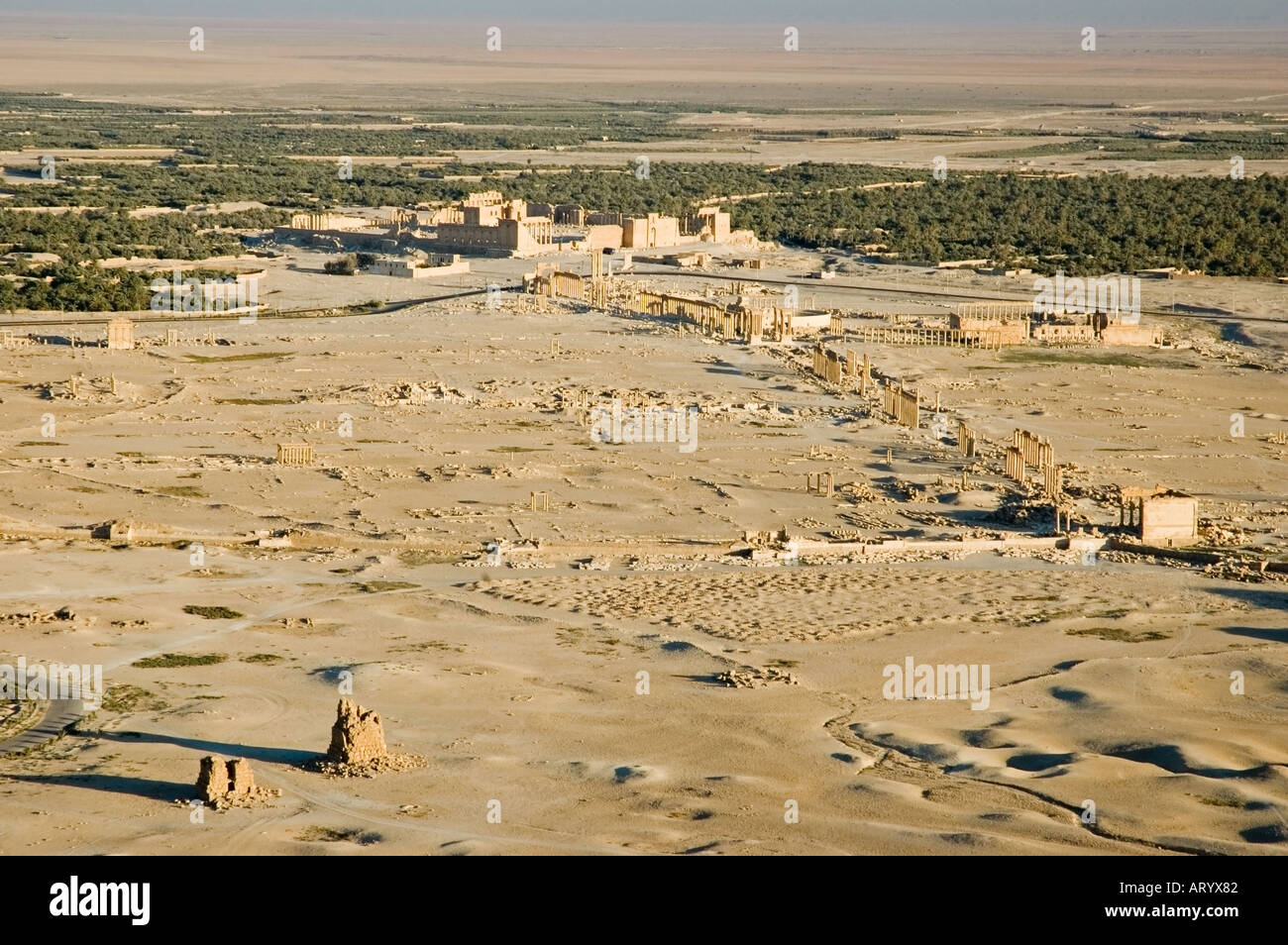 Ancient city of Tadmor, from the Arab Castle, Qalaat Ibn Maan, overlooks Palmyra, Central Syria, Middle East. DSC_5785 - Stock Image