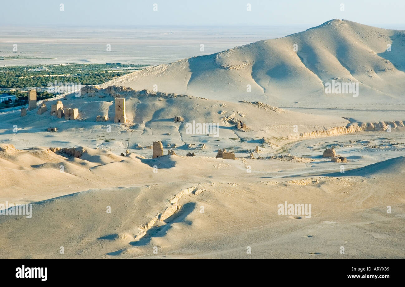 Valley of Tombs, from the Arab Castle, Qalaat Ibn Maan, overlooks Palmyra, Central Syria, Middle East. DSC_5788 - Stock Image
