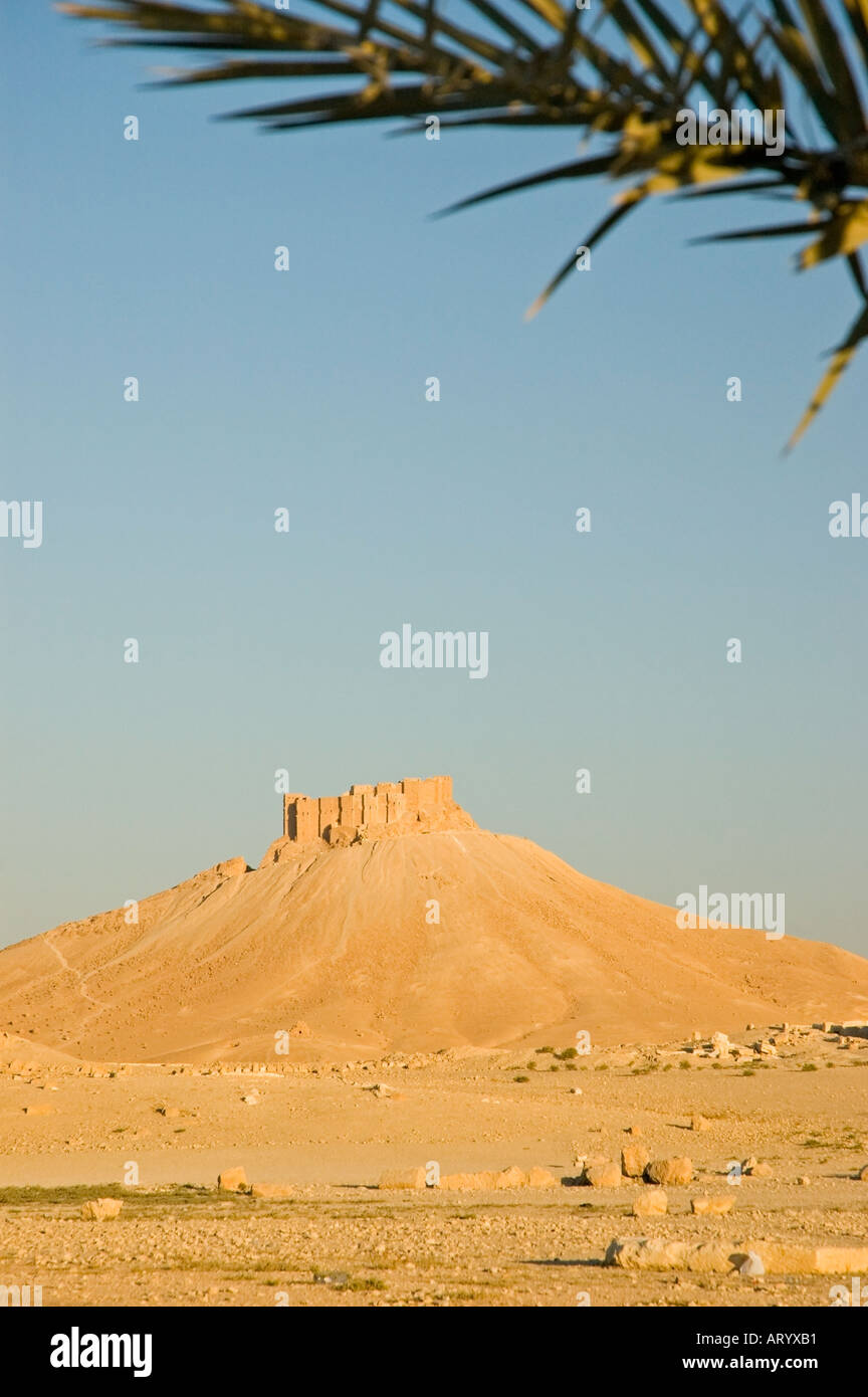 The Arab Castle, Qalaat Ibn Maan, overlooks Palmyra, Central Syria, Middle East. DSC_5848 - Stock Image