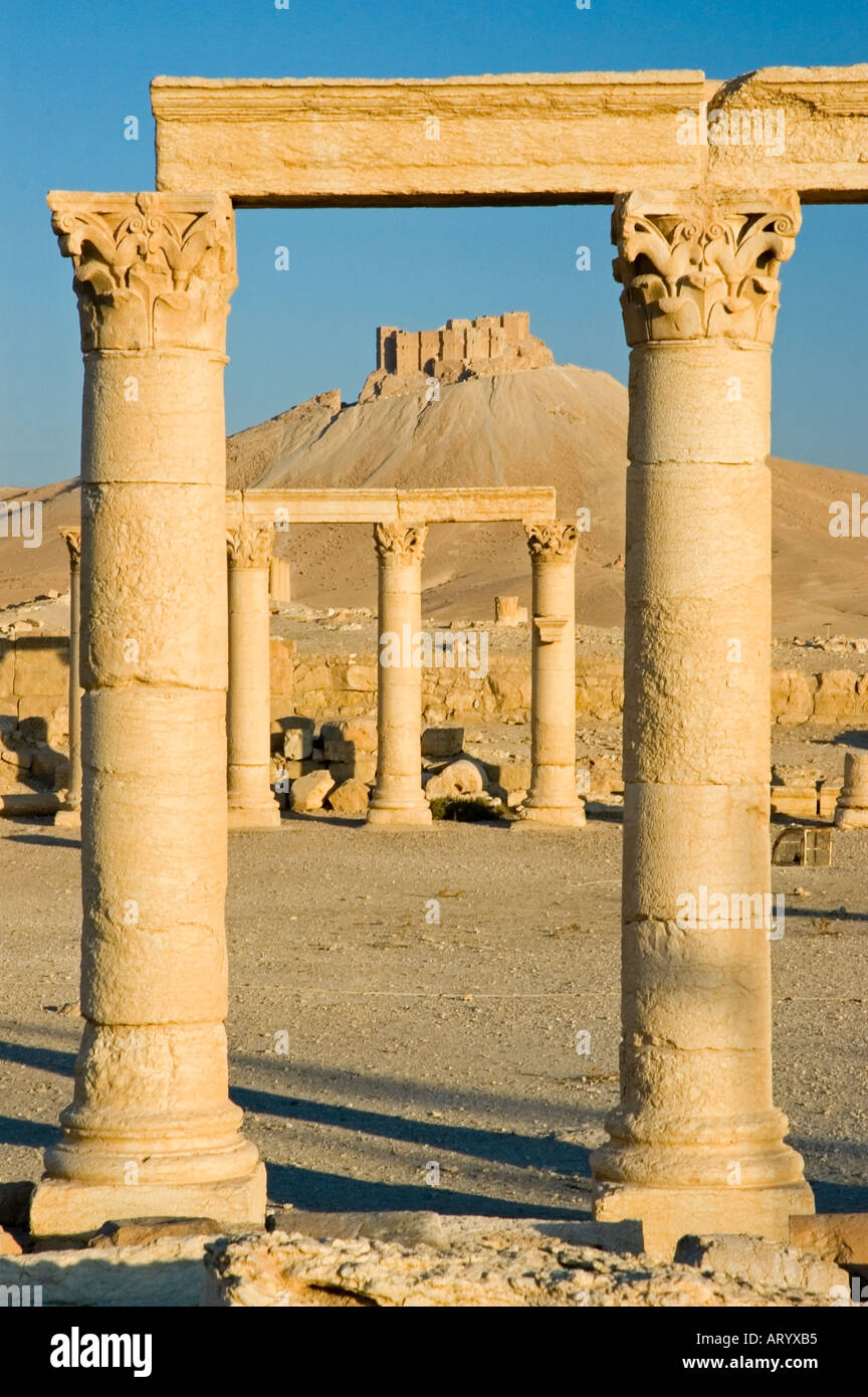 The Arab Castle, Qalaat Ibn Maan, overlooks the ruins of ancient Tadmor, Palmyra, Central Syria, Middle East. DSC_5852 - Stock Image