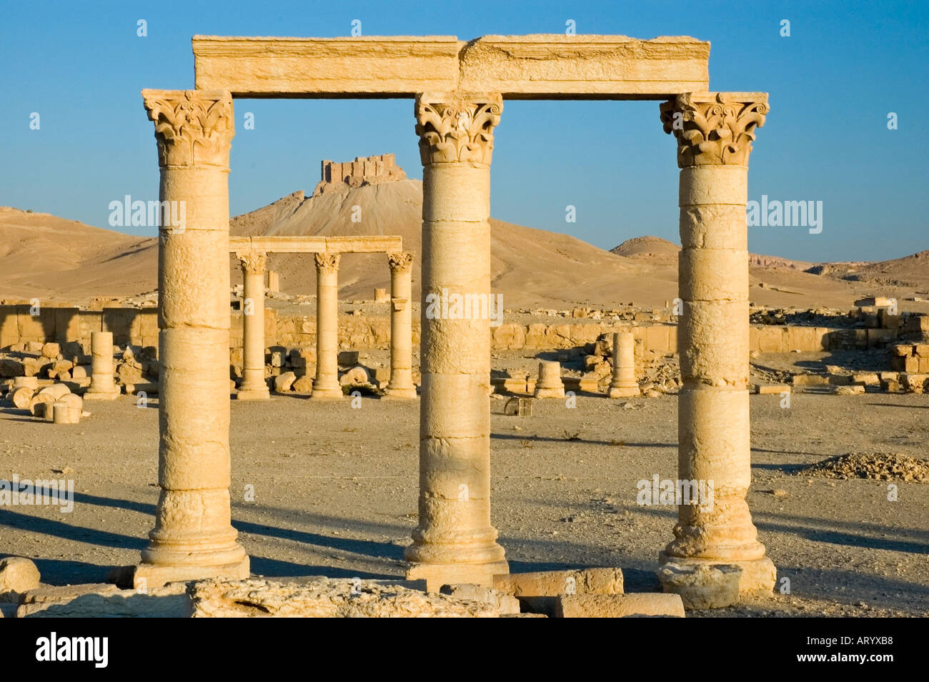 The Arab Castle, Qalaat Ibn Maan, overlooks the ruins of ancient Tadmor, Palmyra, Central Syria, Middle East. DSC_5853 - Stock Image