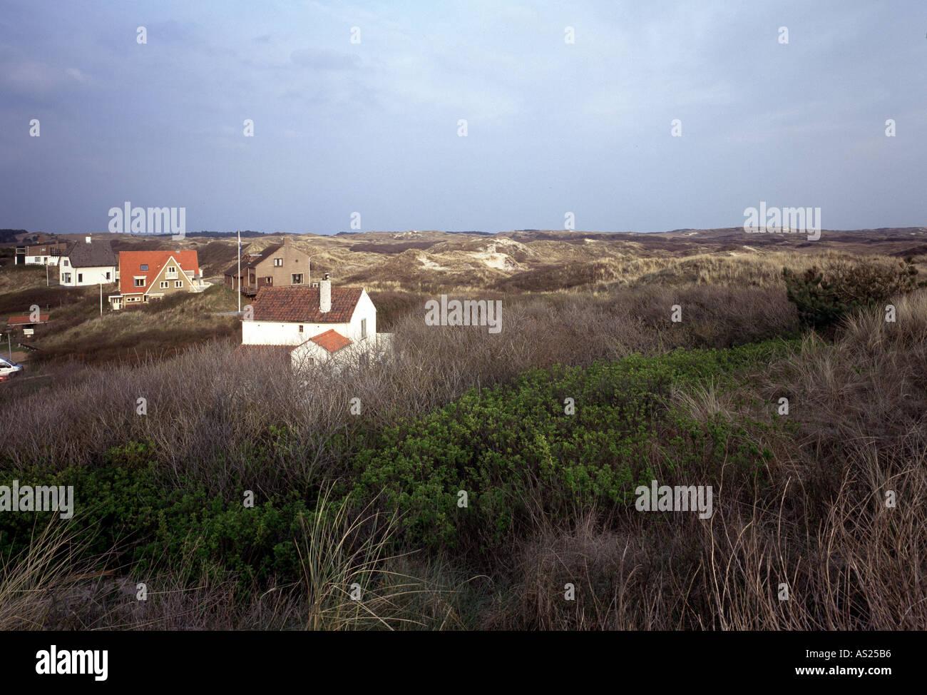 Bergen aan Zee, Dünenlandschaft, - Stock Image