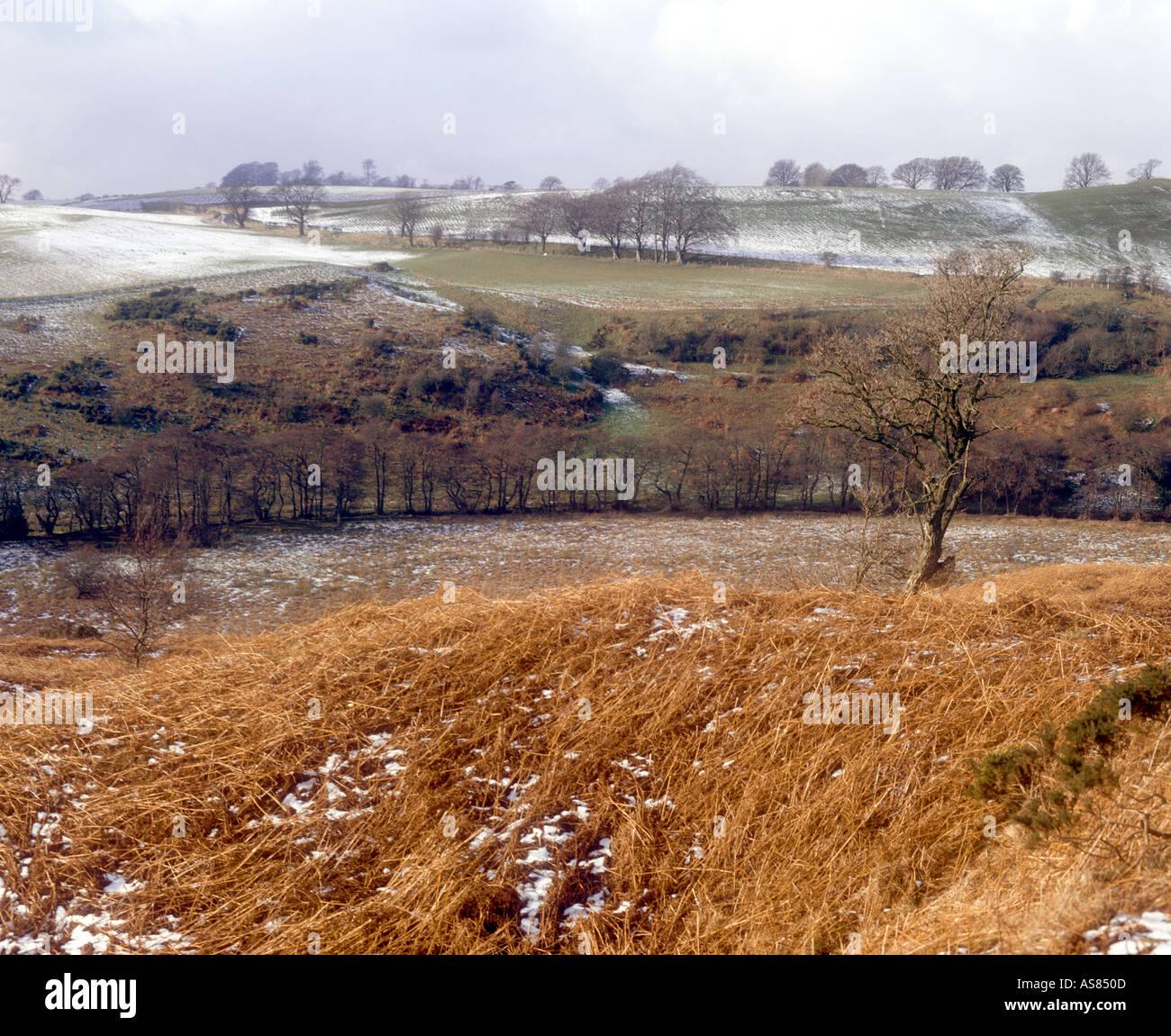 Valley of Tyne Water Crichton Midlothian Scotland - Stock Image