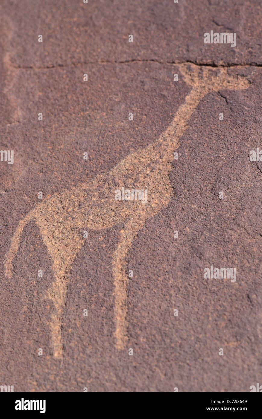 Ancient petroglyphs some dated as early as 3000 BC Twyfelfontein Giraffe Namibia - Stock Image