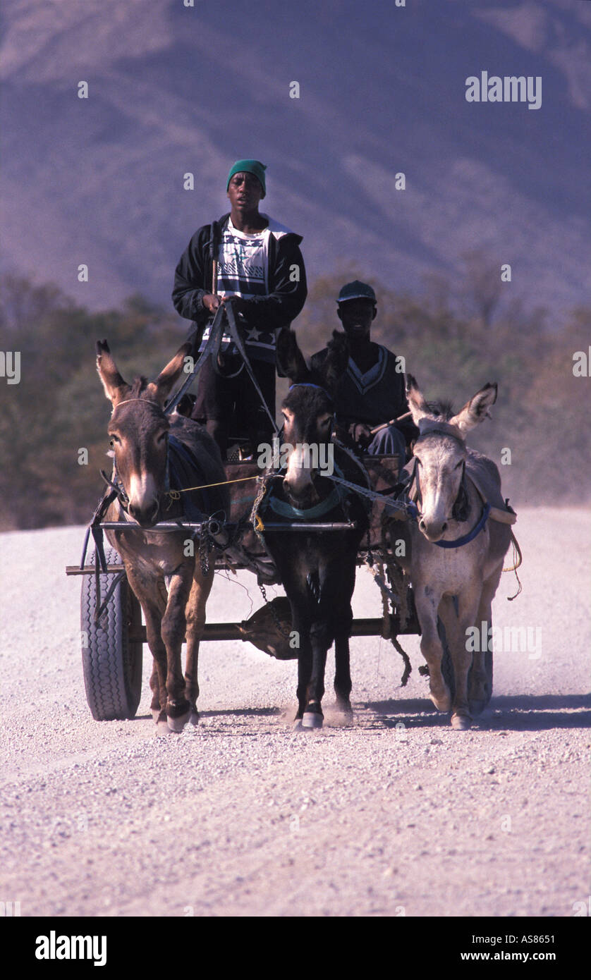 Donkey drawn cart on the Sesfontein to Opuwo road Namibia - Stock Image
