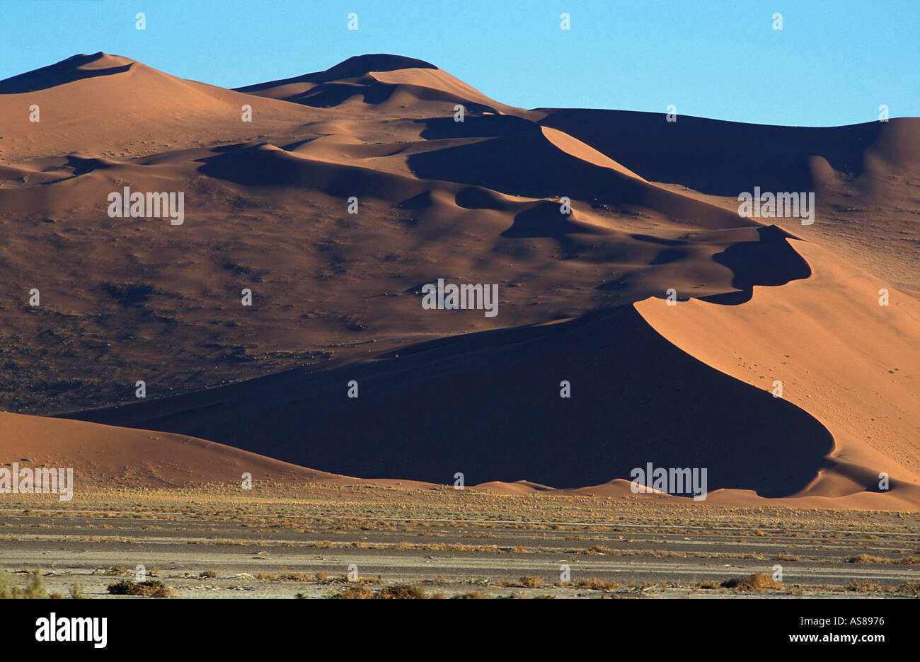 Sand dunes and surrounding desert at sunrise Namib Naukluft National Park en route to Dune 45 and Sossusvlei - Stock Image