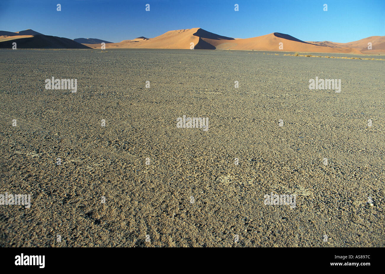 Sand dunes and surrounding desert at sunrise Namib Naukluft National Park en route to Dune 45 and Sossusvlei - Stock Image