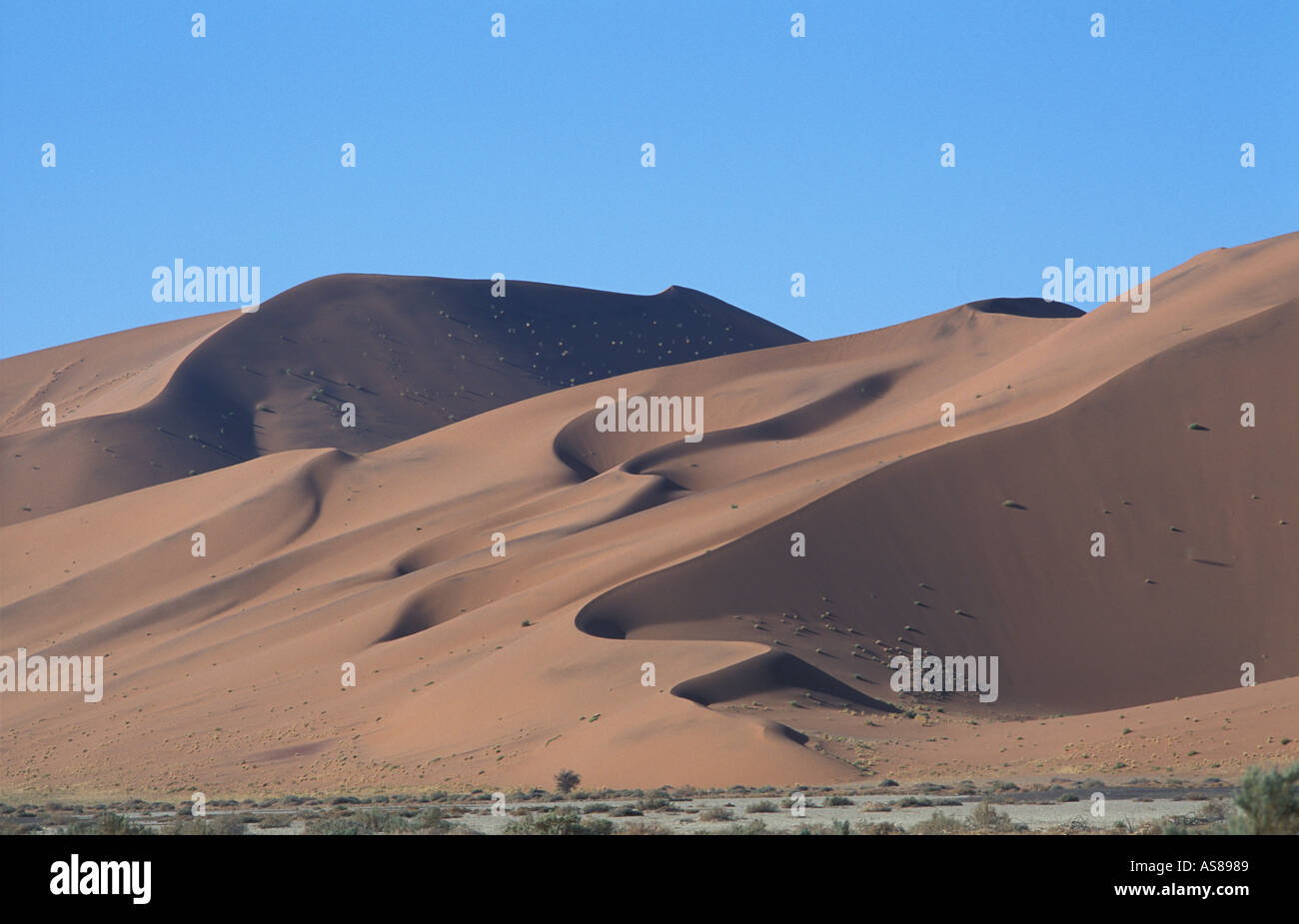 Sand dunes at sunrise Namib Naukluft National Park en route to Dune 45 and Sossusvlei - Stock Image