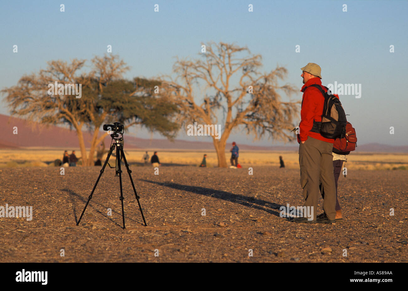 Photographer with tripod photographing Dune 45 at first light Namib Naukluft National Park Namibia - Stock Image