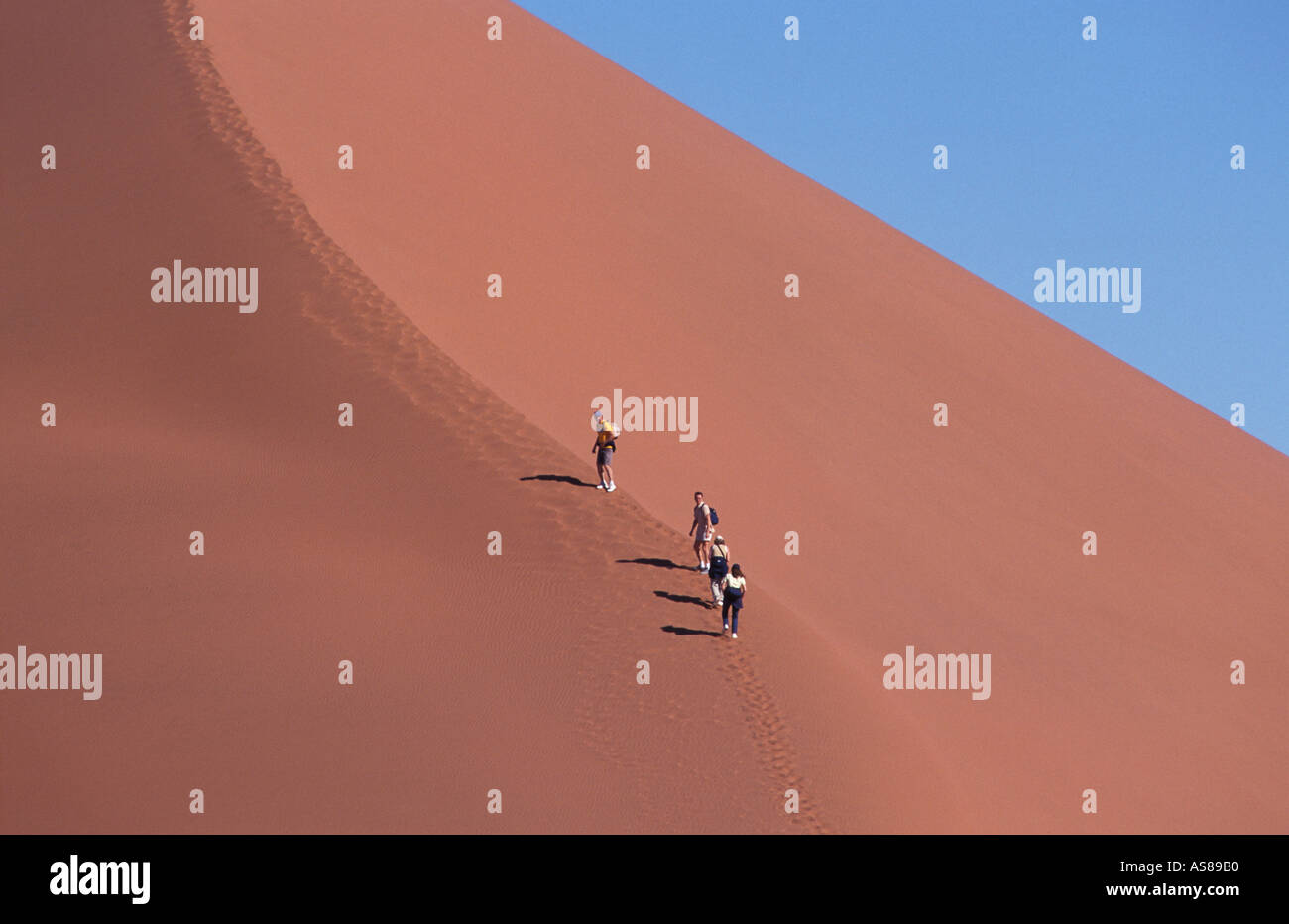 Dune 45 travellers climbing the sand dune Namib Naukluft National Park Namibia - Stock Image