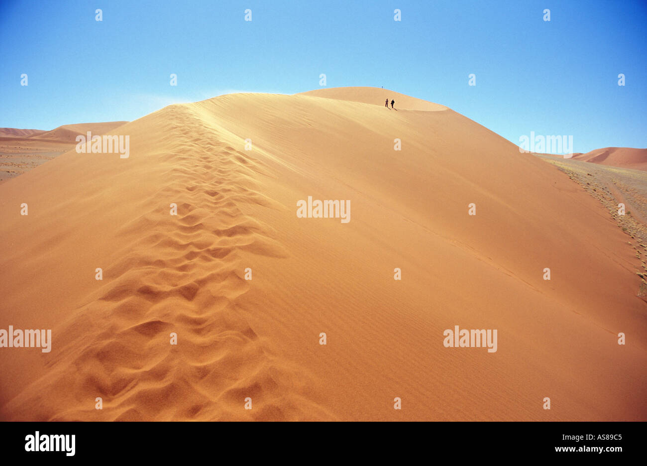 Climbing the sand dune of Sossusvlei Namib Naukluft National Park Namibia - Stock Image