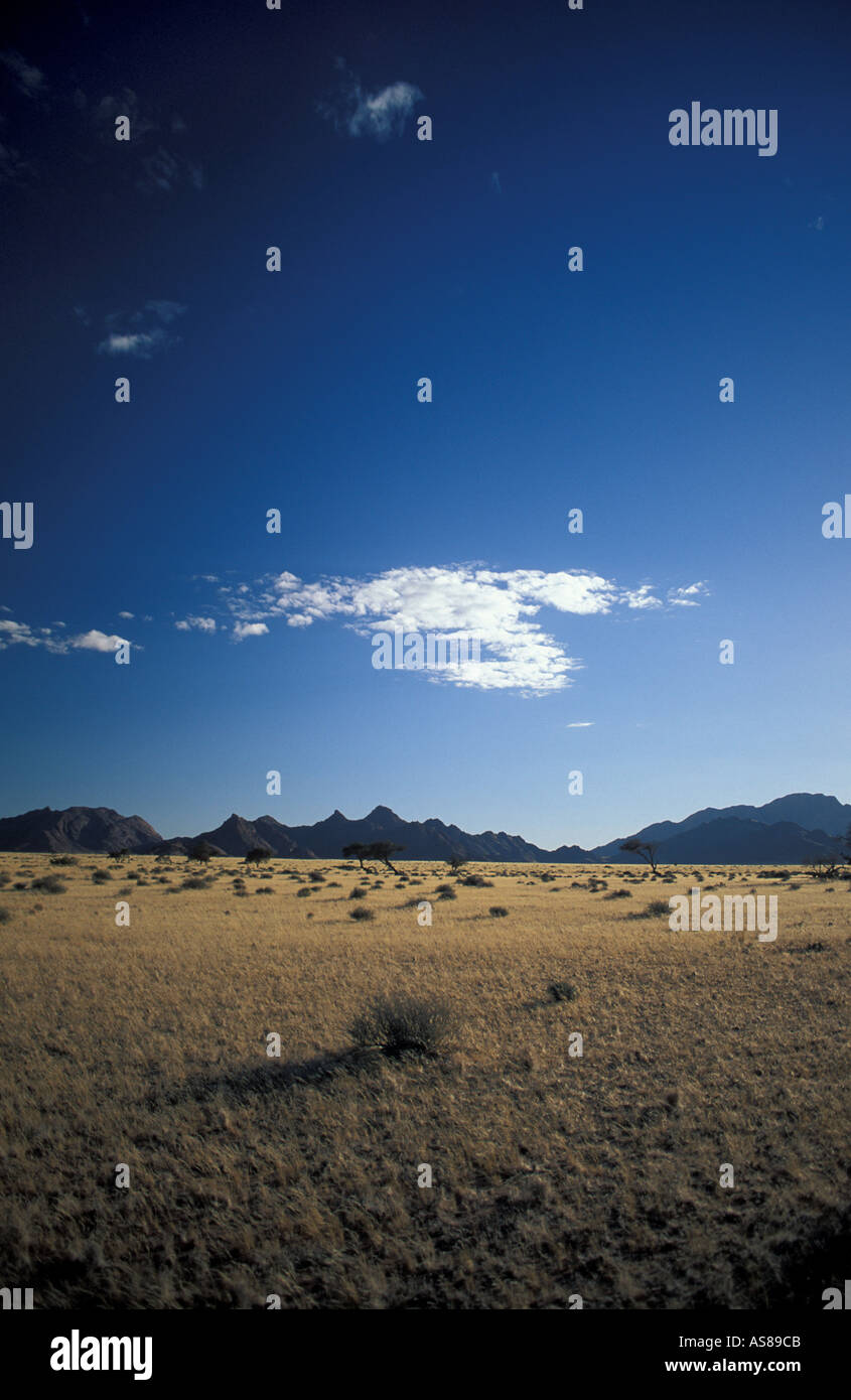 Scrub landscape en route to Sossusvlei Namib Naukluft National Park Namibia Early morning - Stock Image