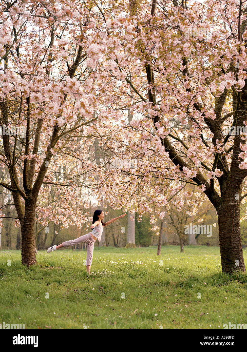young girl dancing in cherry wood in blossom - Stock Image