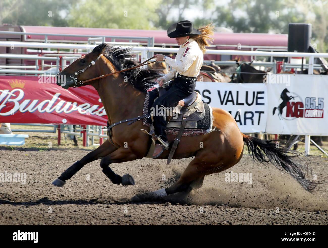 Canadian Rodeo Barrel Racer - Stock Image