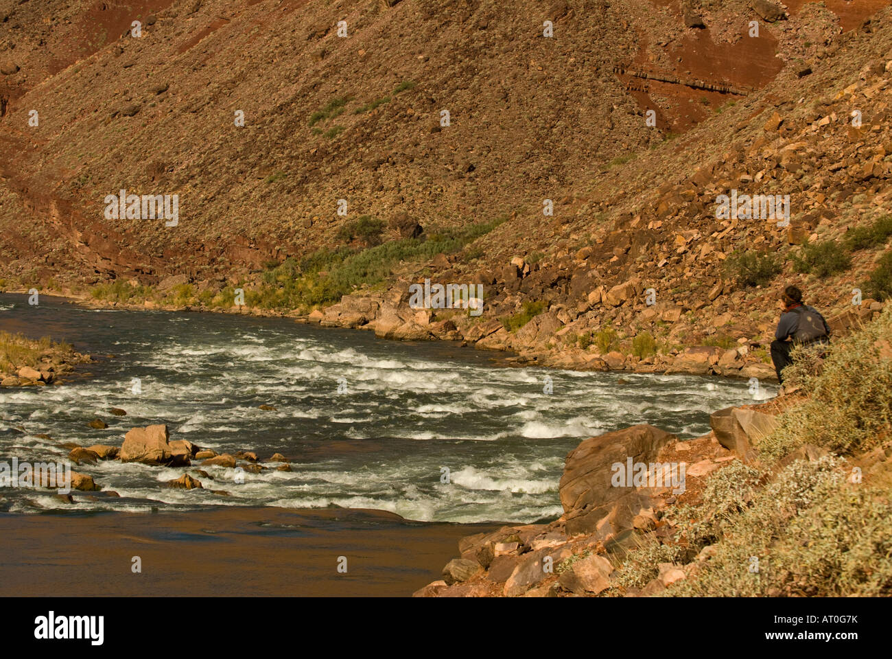 Scouting a rapid on the Colorado River in the Grand Canyon National Park Arizona - Stock Image