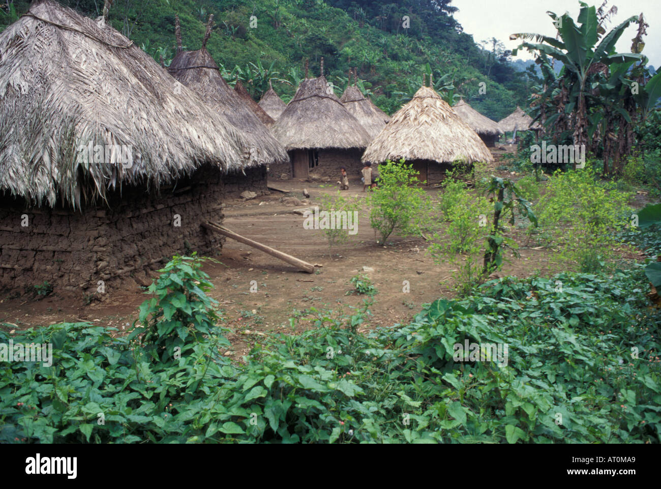 native South American homes in the Columbian jungle ...