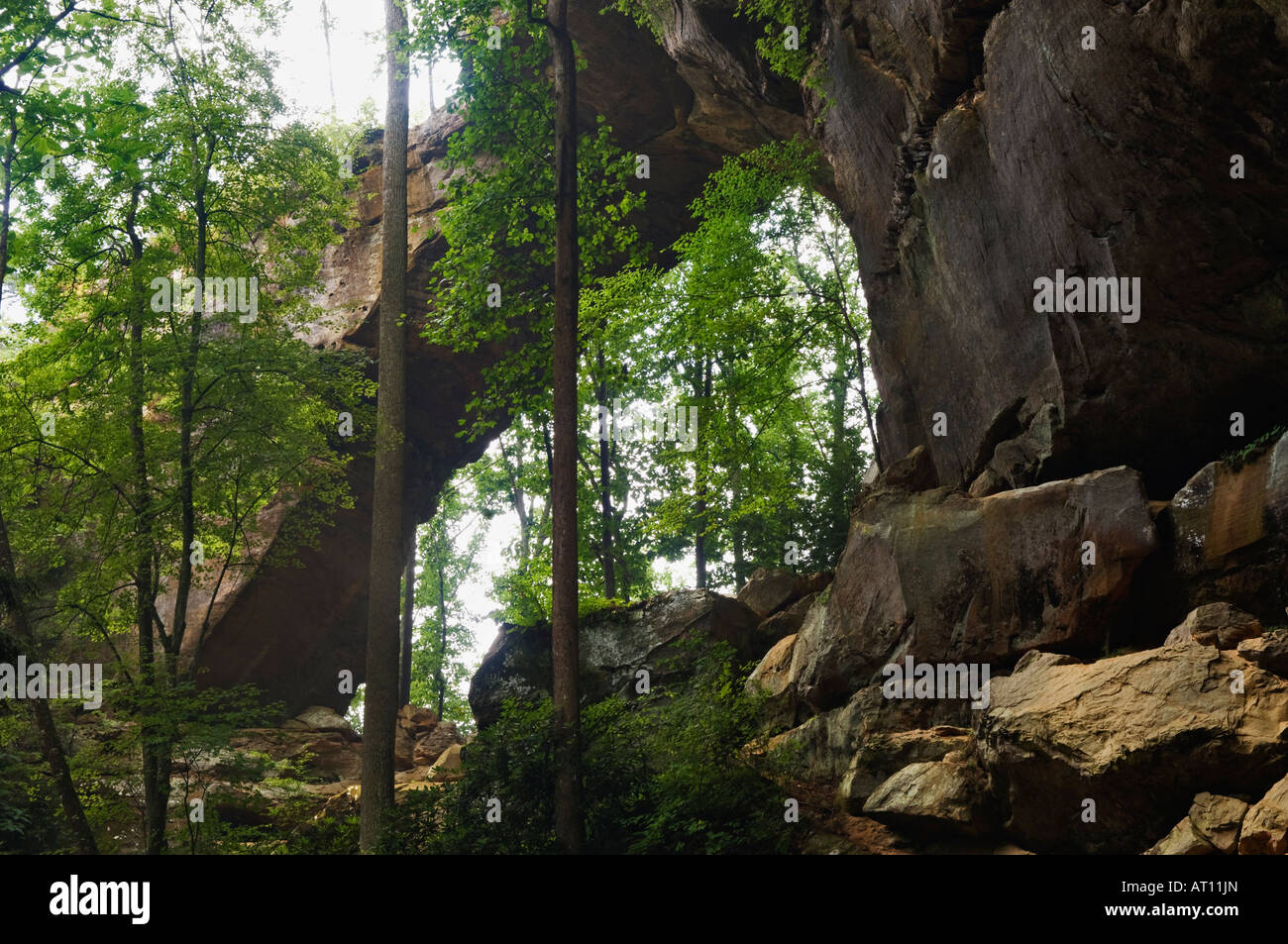 Gray S Arch Red River Gorge Geological Area Kentucky Stock
