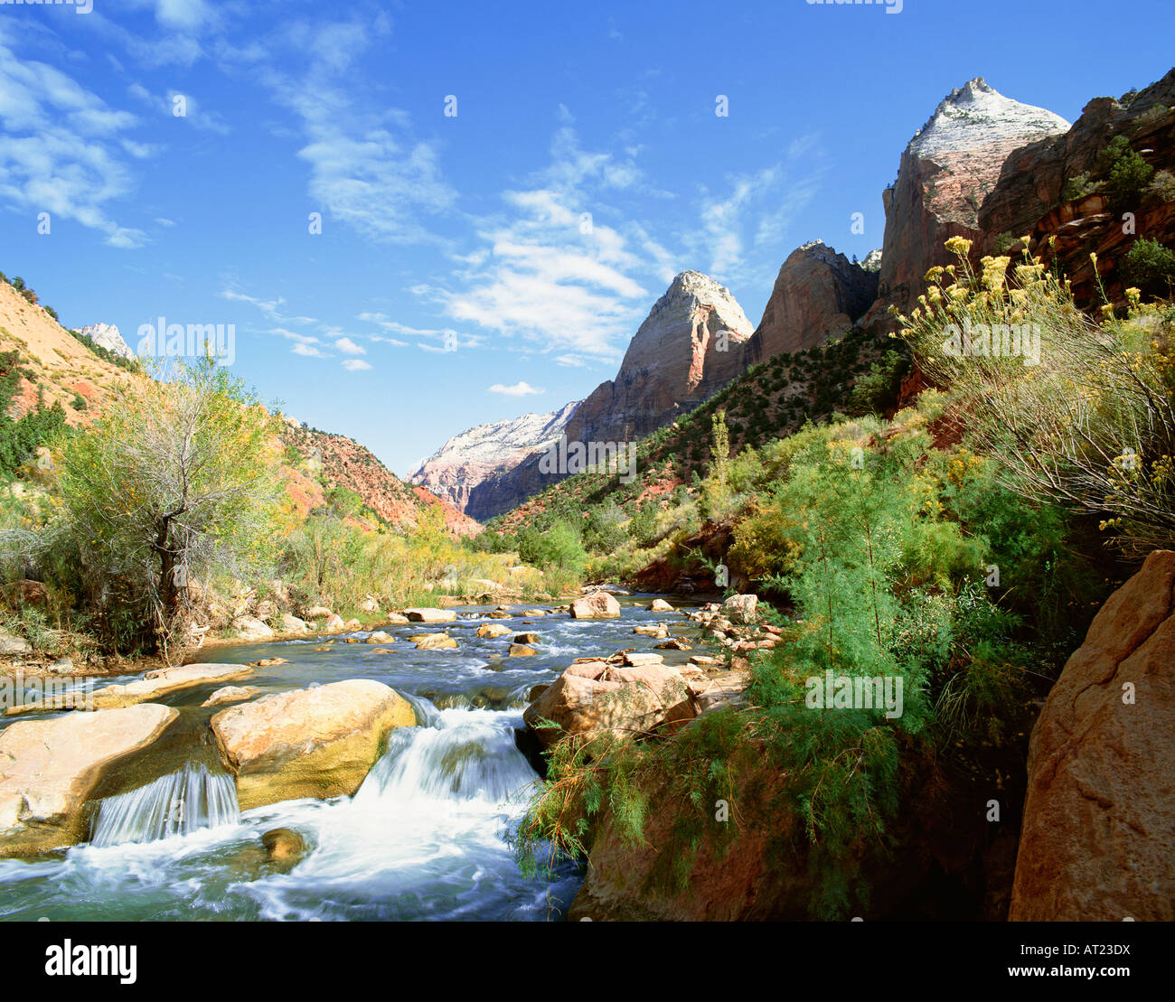 USA UTAH ZION NATIONAL PARK VIRGIN RIVER AND MOUNTAIN OF THE SUN - Stock Image
