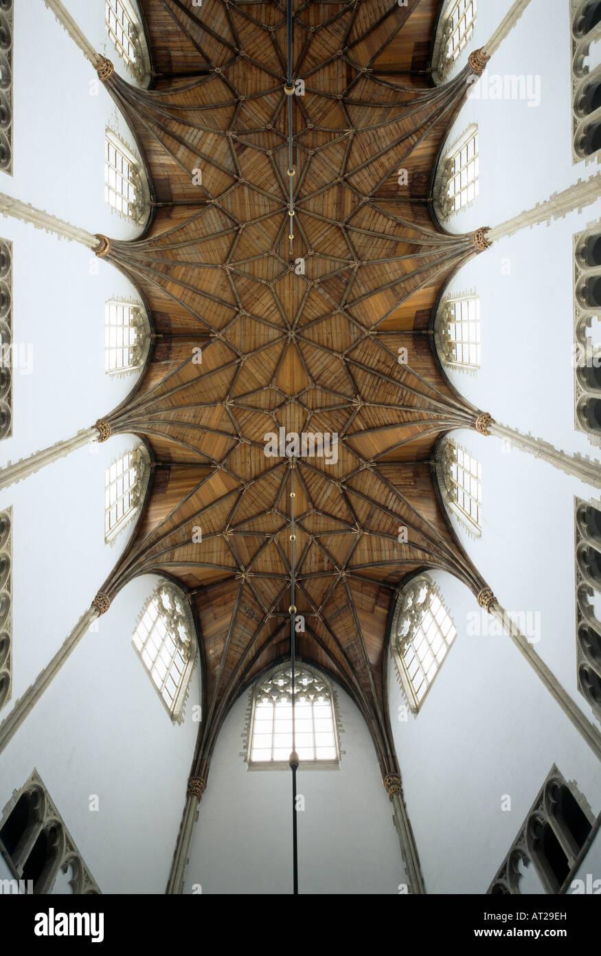 Haarlem, Grote Kerk (St. Bavokerk), Chorgewölbe - Stock Image