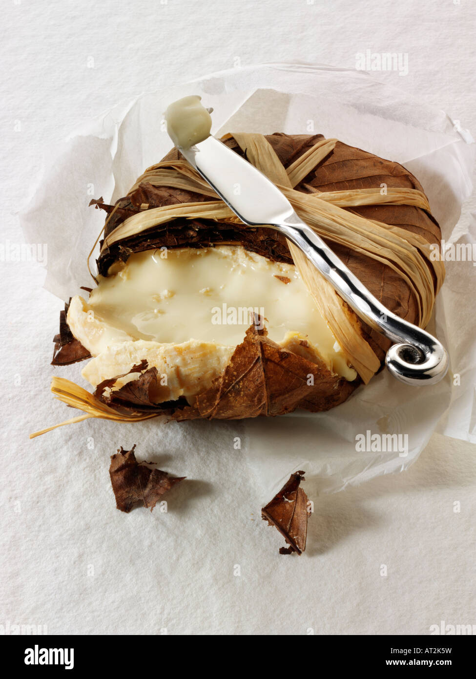 French Bannon soft goats cheese from  Provence in leaves against a white background - Stock Image