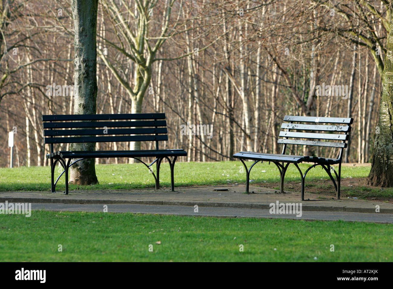 two empty park benches in winter sunlight in park - Stock Image