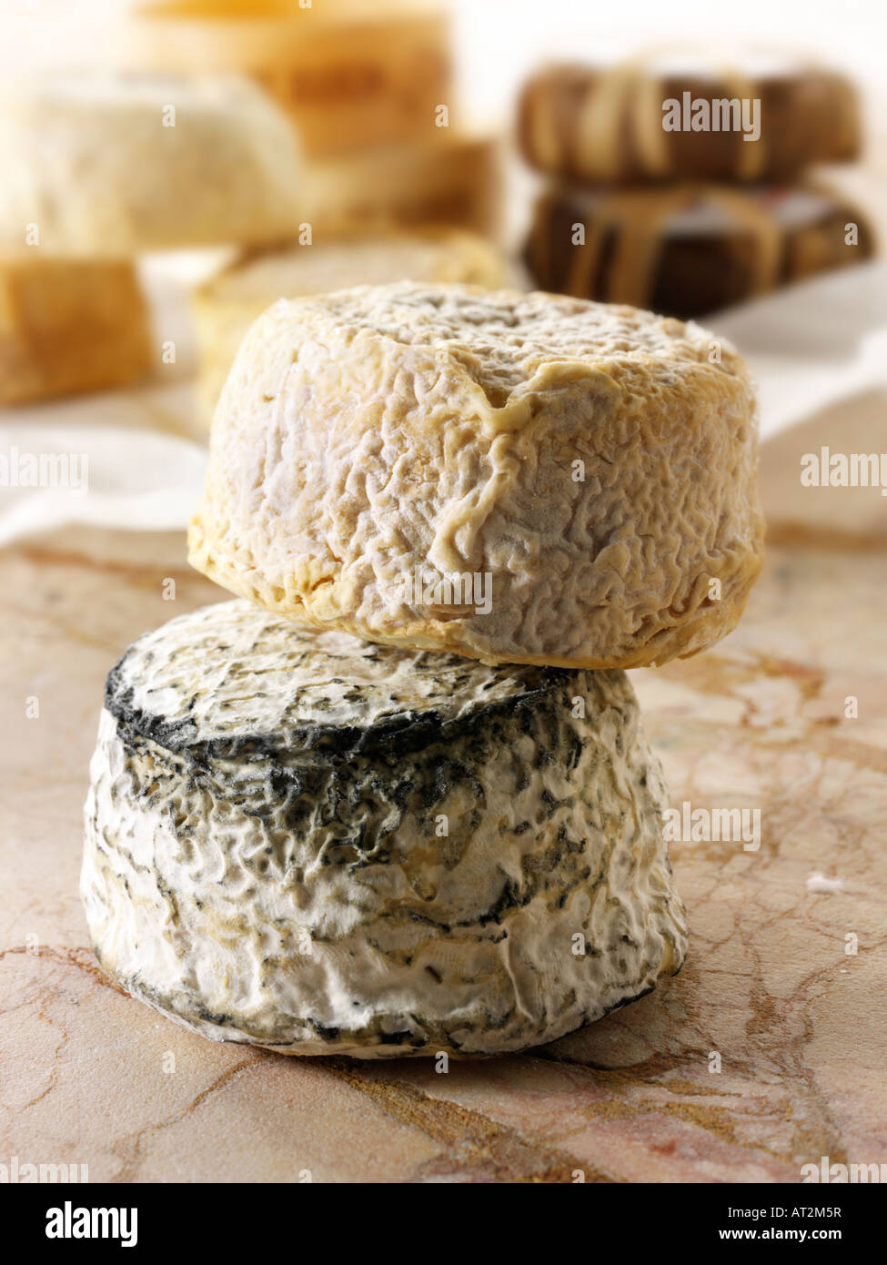 Farm goats cheese from Normandy in a cheese shop setting. - Stock Image