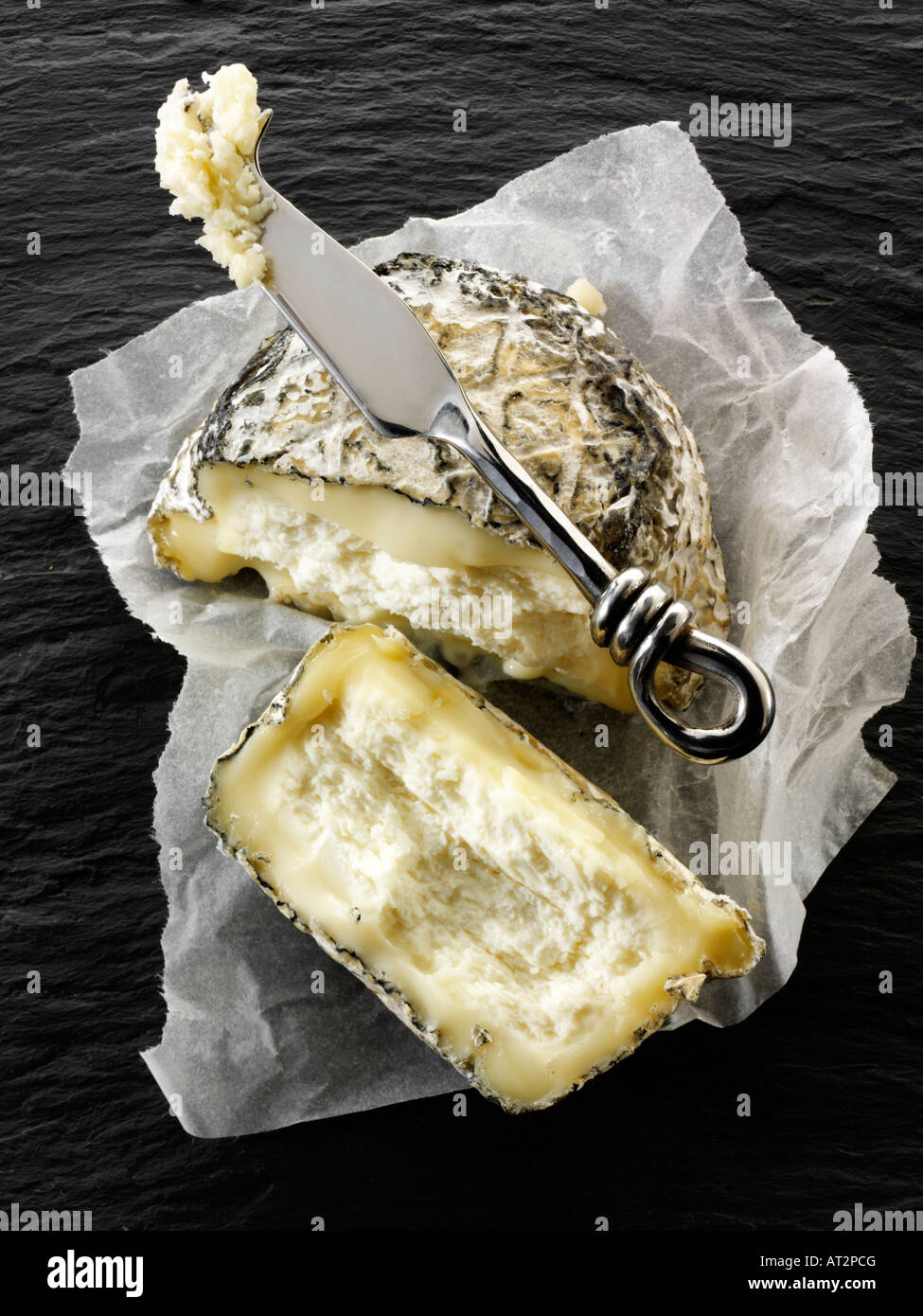 organic farm cinder goats cheese from Normandy against a black background - Stock Image