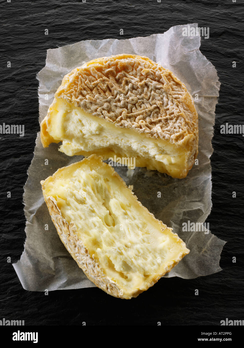 French farmers goat cheese cut on a black background.  Normandy - Stock Image