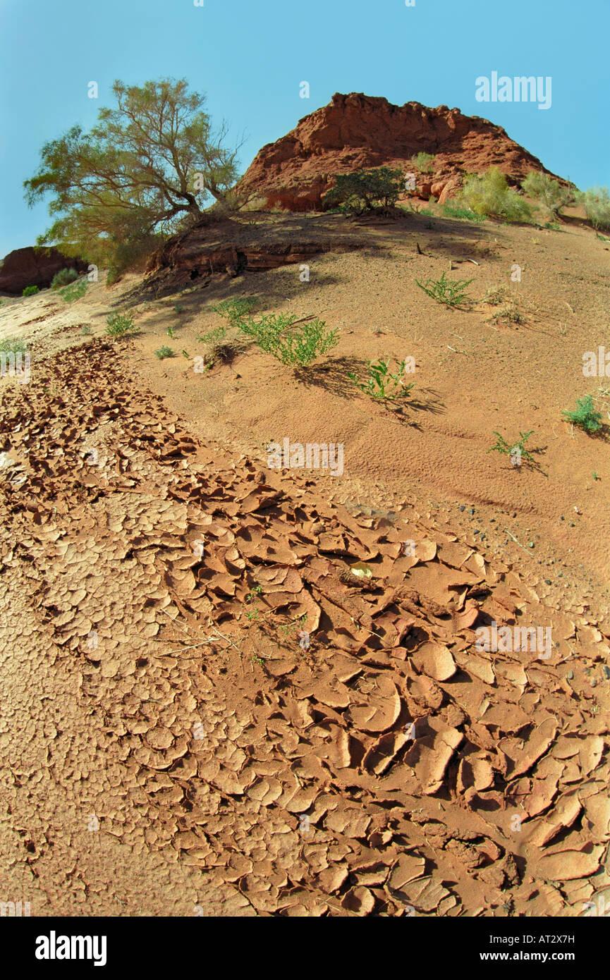 Erosion arid soil. Khermen Tsav, Gobi desert ...