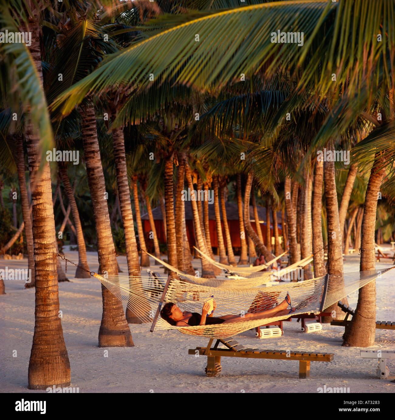 Woman in hammock amongst palm trees Aitutaki Lagoon Resort Cook Islands New Zealand South Pacific Territory - Stock Image