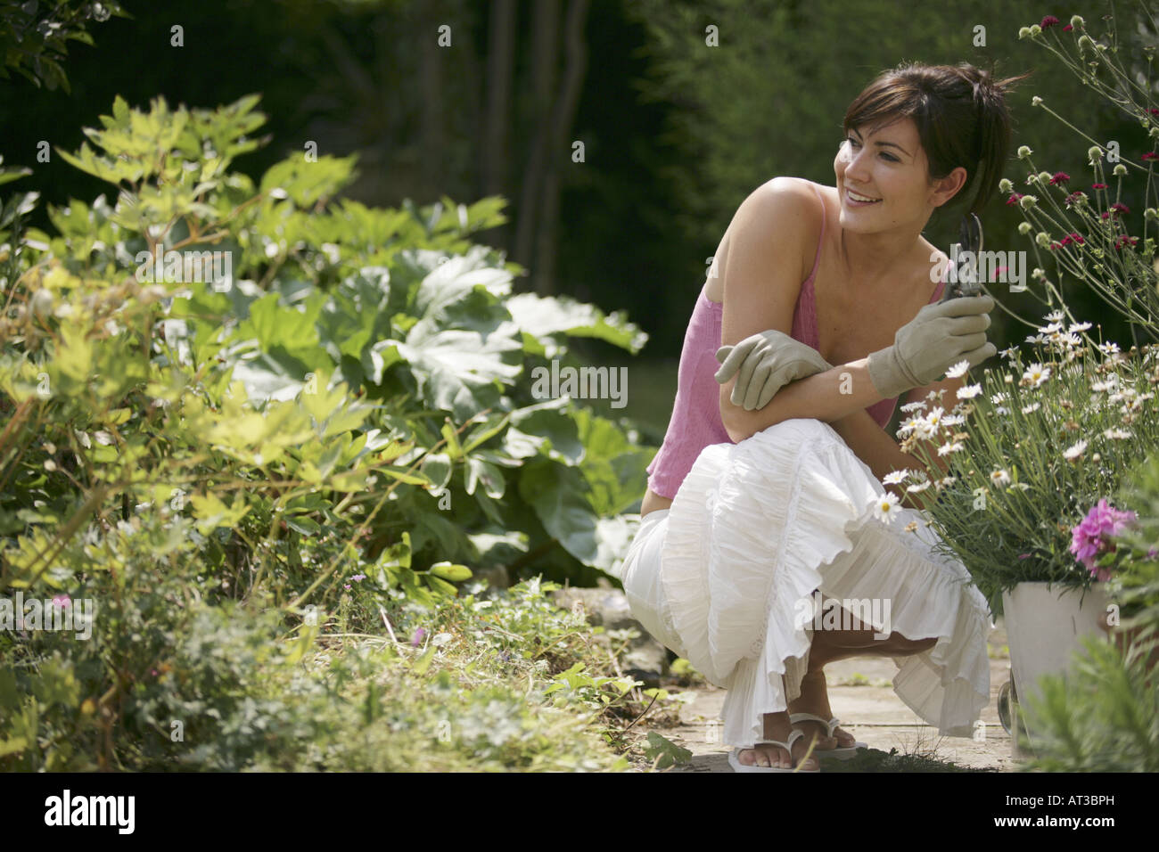 A young woman in her garden pruning flowers - Stock Image